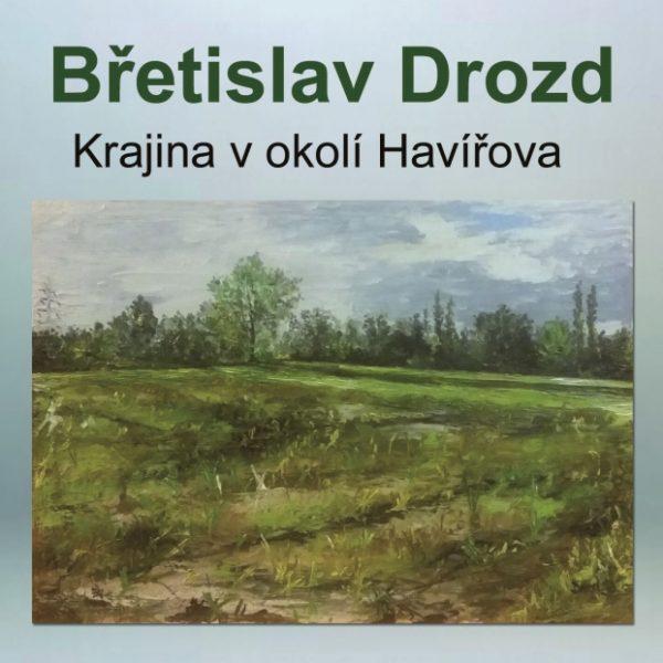 Plakát Videoprezentace z výstavy Břetislava Drozda