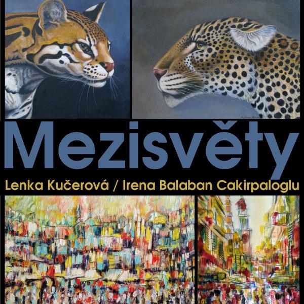 Plakát Videoprezentace z výstavy obrazů olomouckých malířek